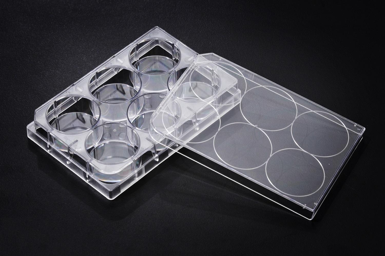 tissue culture plates